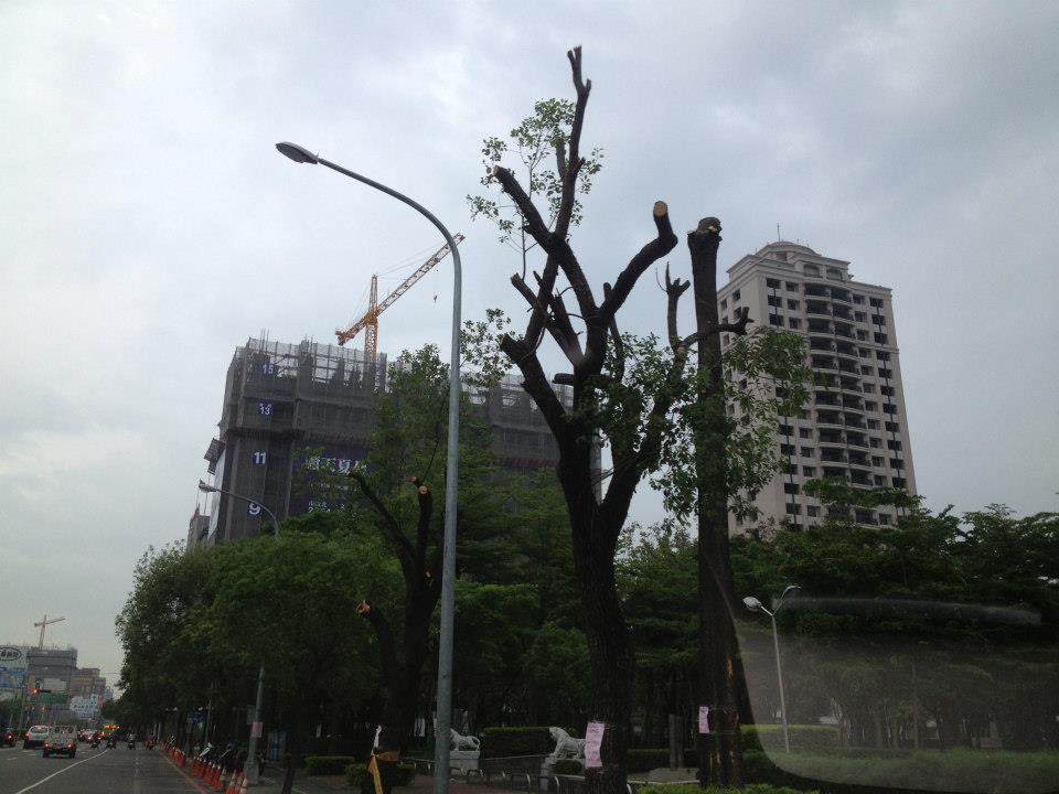 Taiwan 29