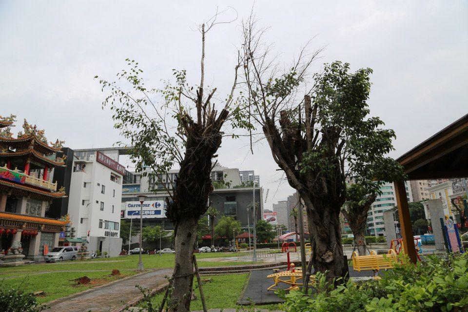 Taiwan 39