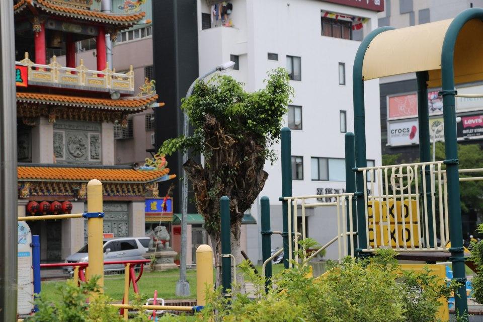 Taiwan 64 (2)