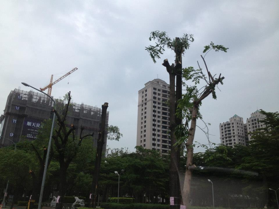 Taiwan 71