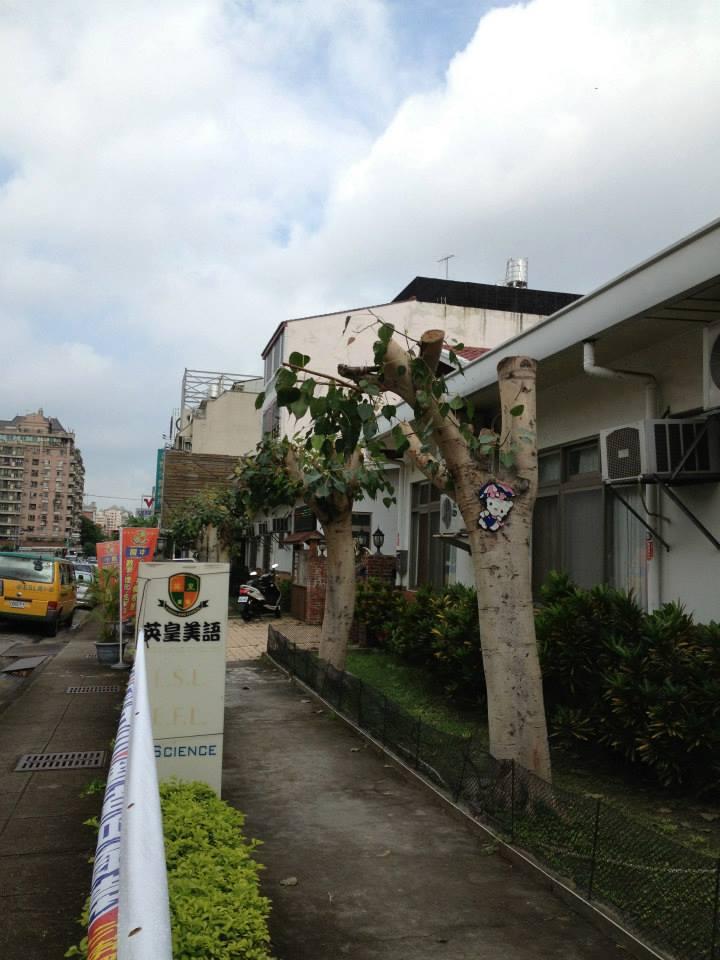 Taiwan 84