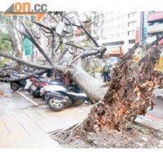 Taiwan --- typhoon soala on 1.8.2012