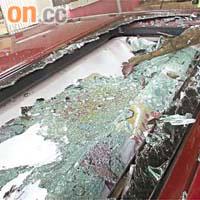 failed branch to smash windscreen