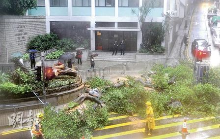 failed tree to block QRC