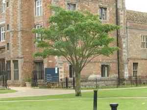 UK trip --- 2014.7.19-26 076
